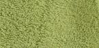vert cactus