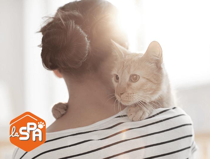 La protection de nos amis les animaux