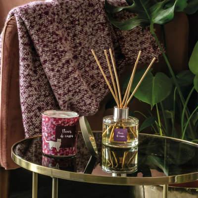 Bougies, Pot pourri et Parfums d\'intérieur